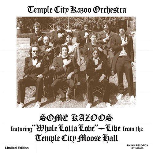 Some Kazoos [Vinilo]