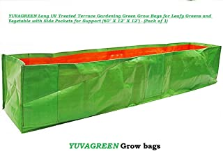 """YUVAGREEN Long UV Treated Terrace Gardening Green Grow Bags for Leafy Greens and Vegetable with Side Pockets for Support (60"""" X 12"""" X 12"""") - (Pack of 1)"""