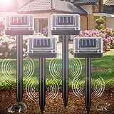Repellente per talpe a energia solare, per allontanare le talpe, impermeabile, per esterni...