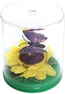 Best solar floating butterfly Reviews