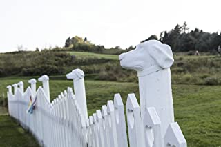 Photograph - Even the picket fence has a dog theme at the Dog Chapel, indeed, a quite serious chapel devoted to departed and/or beloved canine pets- Fine Art Photo Reporduction 36in x 24in