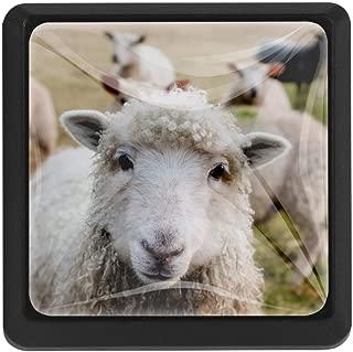 Ireland Sheep Family, 3 Pcs Crystal Class Cabinet Knobs Drawer Kitchen Cabinets Dresser Cupboard Wardrobe Pulls Handles 35mm