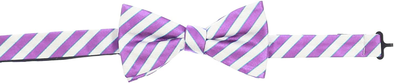 Countess Mara Men's Purple & White Plaid Pre-Tied Bow Tie