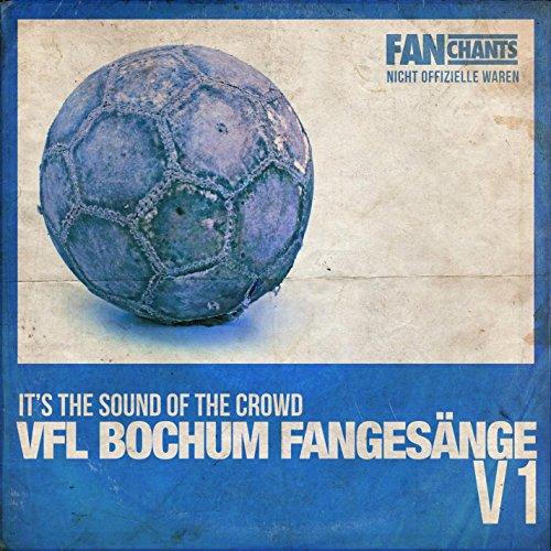 VfL Bochum Schieß Ein Tor