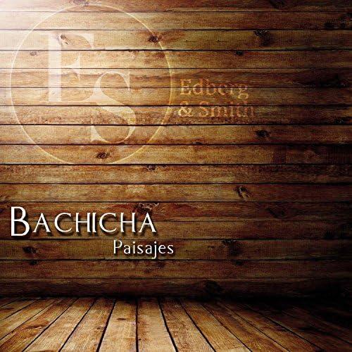 Bachicha