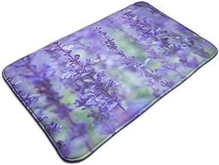 Mcdorty Non-Slip Door Mat Blue Salvia Flowers Field Design, Non Slip Absorbs Soft Rug Carpet for Indoor Outdoor Patio 31.5 X 19.5 Inch