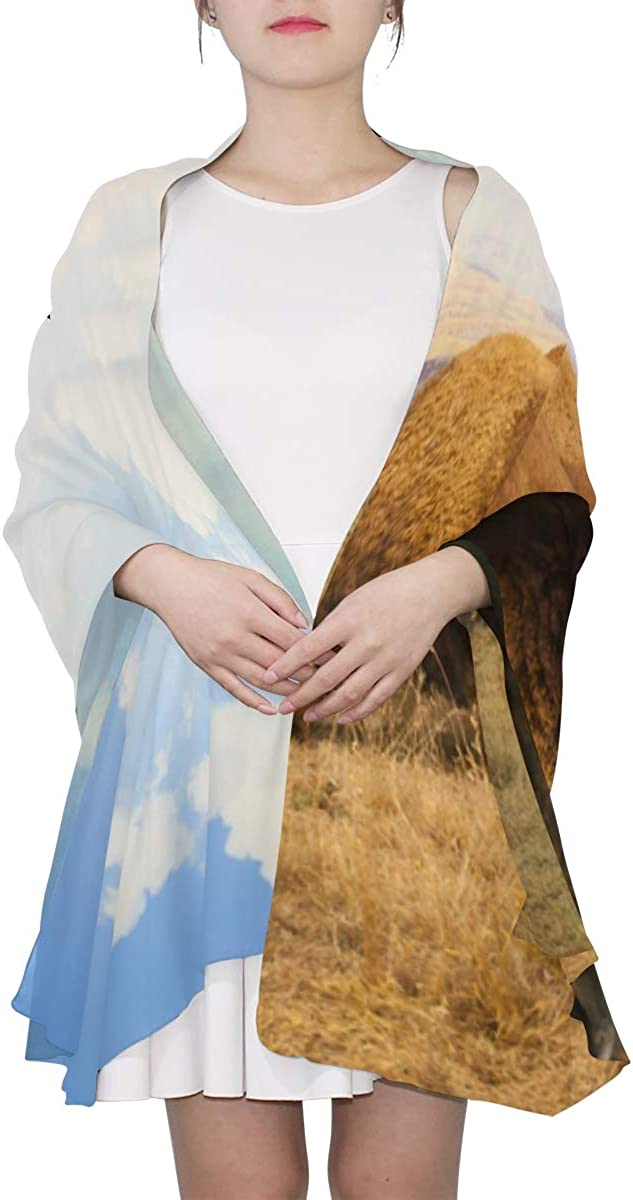Ferocious Bison Unique Fashion Scarf For Women Lightweight Fashion Fall Winter Print Scarves Shawl Wraps Gifts For Early Spring