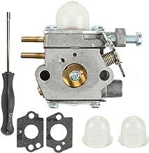 Buckbock WT-973 Carburetor for Remington RM2520 RM2560 RM2570 RM2599 RM2750 MTD M2500 M2510 41AD251G900 41AD260G900 41AD160G965 String Trimmer 753-06190