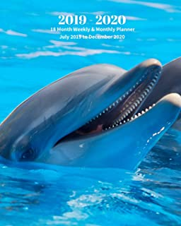 2019 - 2020 | 18 Month Weekly & Monthly Planner July 2019 to December 2020: Dolphin Ocean Mammal Nature Vol 17 Monthly Calendar with U.S./UK/ ... Holidays– Calendar in Review/Notes 8 x 10 in.