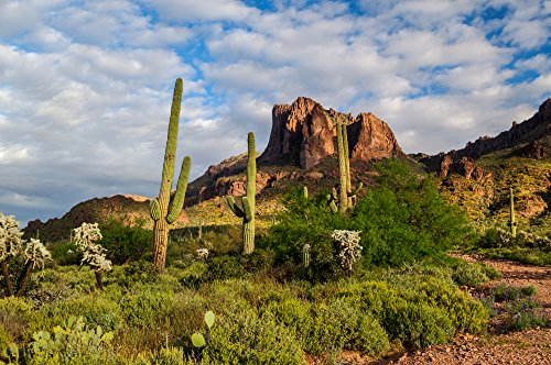 Apache Trail & Dolly Steamboat Experience for Two in Arizona - Tinggly Voucher / Gift Card in a Gift Box