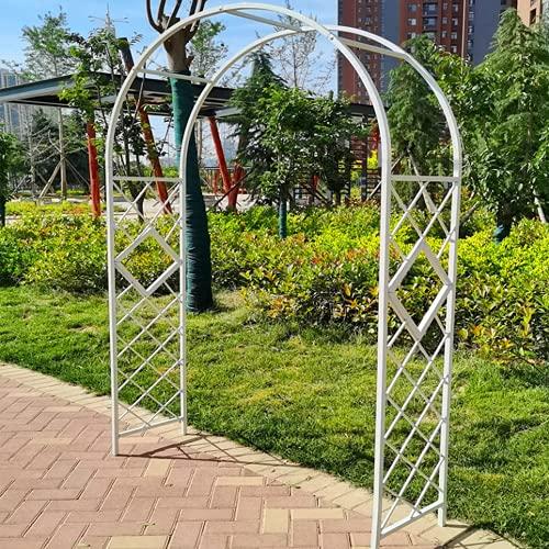 HPDOM Arco da giardino in Metallo, pergole e Archi da giardino, gabbia per piante tubolari robuste per impieghi gravosi, Patio da giardino con Prato Inglese all