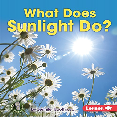 What Does Sunlight Do? copertina