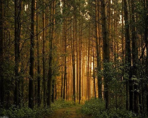 ZSFFSZ Puzzle in Legno 1000 Pezzi Foresta di Pini Decorazioni E Regali Unici per La Casa