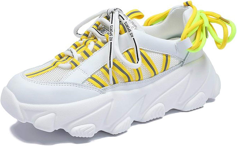 Lishfun 2019 Dad shoes Breathable Mesh Summer Women Casual Sneakers Streetwear Lace-net Crossing shoes Femme