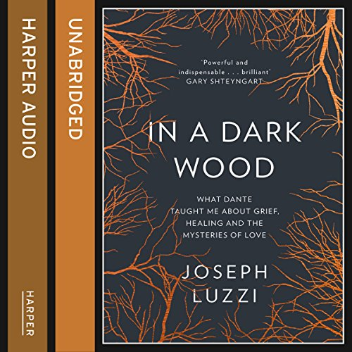 In a Dark Wood: What Dante Taught Me About Grief, Healing, and the Mysteries of Love cover art