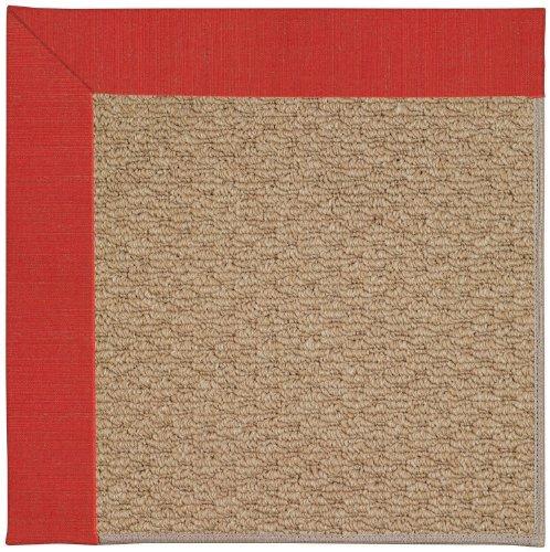 Capel Rugs Zoe-Raffia Rectangle Machine Tufted Area Rug, 7 x 9', Red Crimson