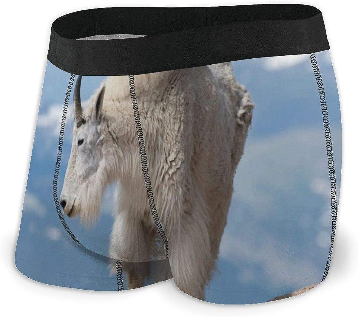 Randolph Wordsworth Mens Boxer Briefs Mountain Goats Roaming Breathable Underwear