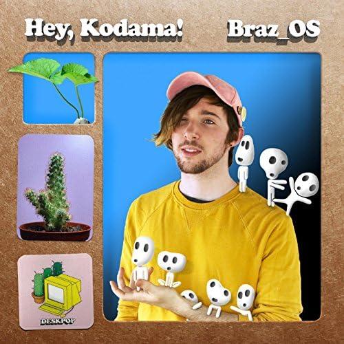 Braz_OS