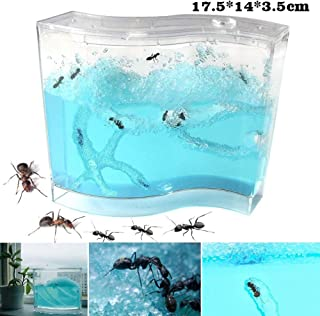 INSO Ant Farm Ant Work Ant Palace Ant Factory Ant Home Gel Maze Ant Fun Glue, Ant Works Castle Experiment