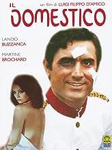 Il_domestico [Italia] [DVD]