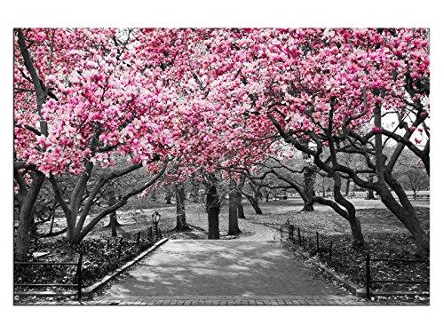 kunst-discounter Fiori Rosa Solo! Tela Immagine da Parete. Stampa Artistica. Telaio A05771, 150 x 100 cm