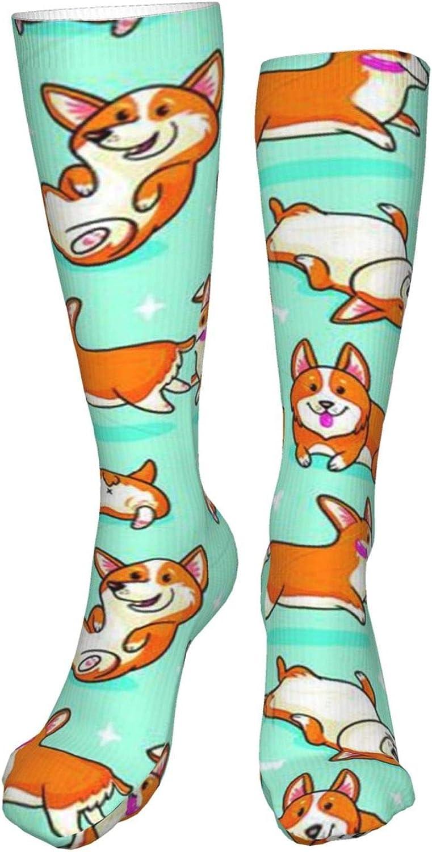Corgi Women Premium High Socks, Stocking High Leg Warmer Sockings Crew Sock For Daily And Work
