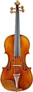 Raul Emiliani VL928 Violin Outfit
