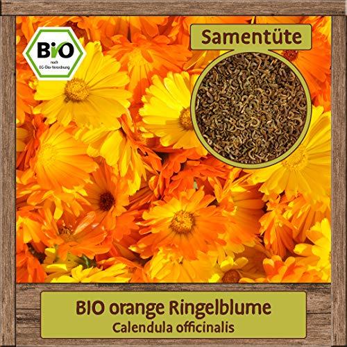 Samenliebe BIO Blumen Samen Ringelblumen orange (Calendula officinalis) | BIO Ringelblumensamen Blumensamen | BIO Saatgut für 3m²