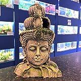 Mezzaluna Gifts Adorno de acuario grande de 28 cm de altura, diseño de cabeza de Buda gris con detalle de raíz y abertura para nadar.