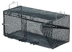 top rated Flavir Crayfish Trap 8 x 8 x 18 inch Black 2021