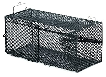 Best crayfish traps Reviews