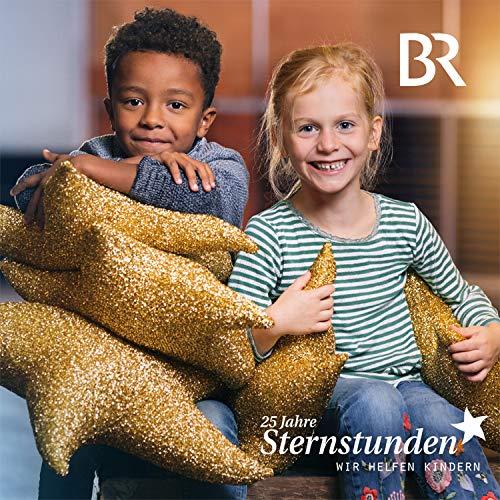 (Ich wünsch dir) Sternstunden - der BR Benefizsong [feat. Christina Stürmer & das Münchner Rundfunkorchester]
