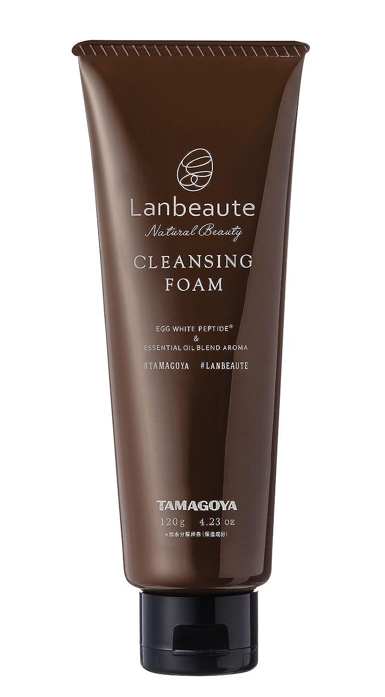 借りているアンタゴニスト磁気Lanbeaute ツーインワン洗顔フォーム(120g)
