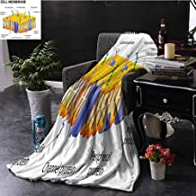 Luoiaax Educational Luxury Special Grade Blanket Detailed Diagram of Membrane Cell Structure Types of Protein Molecules Multi-Purpose use for Sofas etc. W70 by L90 Inch Yellow Blue Green