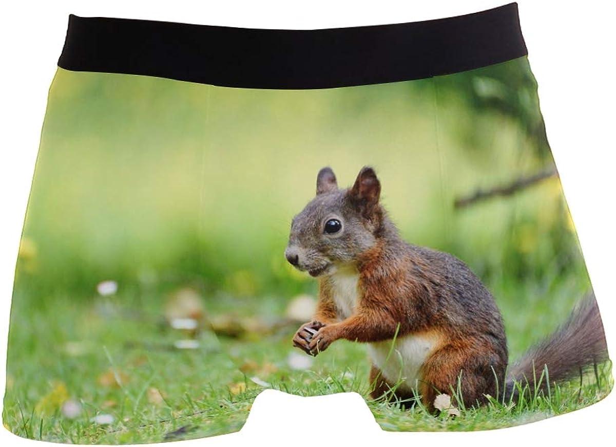 Fantasy Cat Riding Unicorn Men's Boxer Briefs Comfortable Soft Underwear Creative Pattern S