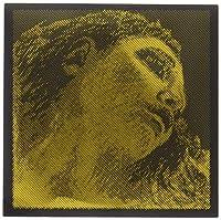 EVAH PIRAZZI GOLD エヴァ ピラッツィ ゴールド ヴァイオリン弦E線 (ループエンド)