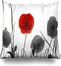 Ahawoso Throw Pillow Cover Pillowcase Square 16x16 Poppies Flowering Latin Italy Fields Forces Papaver Chelsea Rhoeas Monte Nature Signs Symbols in Decorative Cushion Case Home Decor Pillowslip