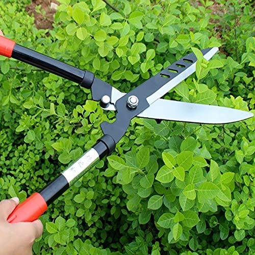 ZZQQ Herramientas Superiores Profesionales de Titanio Bypass Tijeras de podar la Planta de jardinería de Mano de Tijera podadora Rama Trabajo Ahorro Trimmer Solid Och hållbar