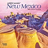 New Mexico Wild & Scenic 2021 7 x 7 Inch Monthly Mini Wall Calendar, USA United States of America Southwest State Nature