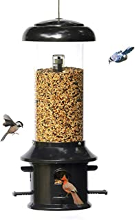 Nature's Rhythm Squirrel Proof Bird Feeder of Weather Guard 4 Classic Ports,1.5lb Seed Capacity,Wild Bird Feeder Hanging f...