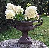 Antikas - Maceta para Flores - Maceta de Hierro Fundido Estilo Barroco - ánfora para Plantas - maceteros