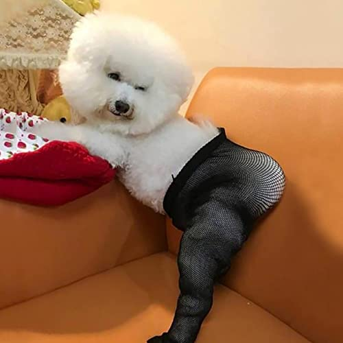 high quality Dog Girl Fish Net Tight Fashion Lace Fishnet Sock for Pet Dog Black Lace Fishnet Socks Elastic Hollow Out Mesh Net Leggings for Pet online sale Dog Tricky Cloth discount Costumes online