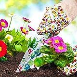 Immagine 2 hortem attrezzi da giardinaggio per