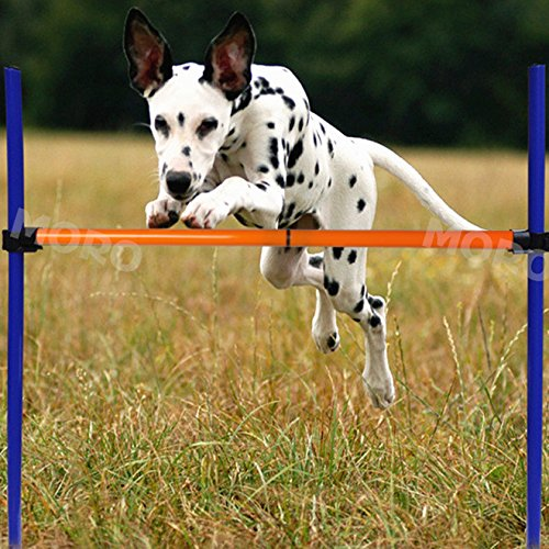 ZOIC Pet Dogs Outdoor Games Agility Exercise Training Equipment Jump Hurdle bar Obedience Show Training