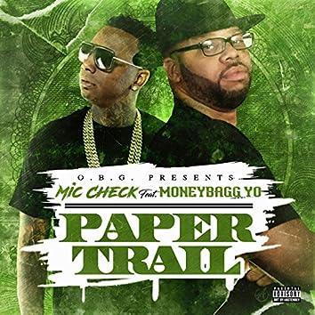Paper Trail (feat. Money Bagg Yo)