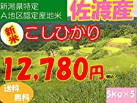 平成28年新潟県産特定産地米 (佐渡産5㎏×5)