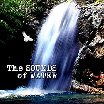 The Sounds of Water