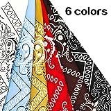 Zoom IMG-2 lisopo sciarpa da donna