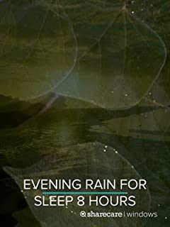 Evening Rain for Sleep 8 hours