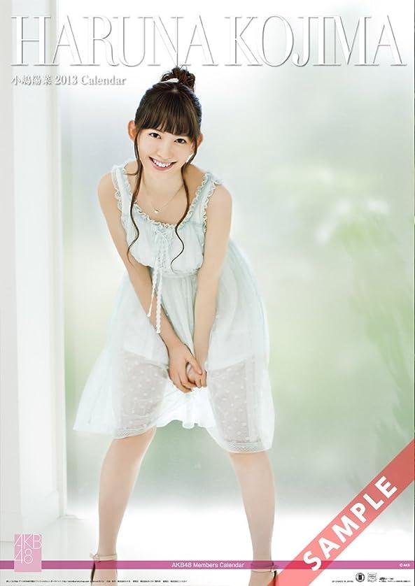 損なう擁する遺産AKB48 2013 壁掛けカレンダー 小嶋陽菜 AKB48-07